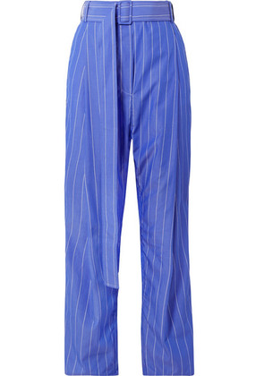 Ellery - The Groove Pleated Pinstriped Cotton-poplin Pants - Blue
