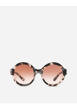 Dolce & Gabbana Sunglasses - ROUND SUNGLASSES IN ACETATE WITH LOGO PLATE PEARL PINK/HAVANA GRAY