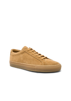 Common Projects Original Suede Achilles Low in Neutrals