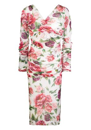 Dolce & Gabbana floral fitted midi dress - Pink & Purple