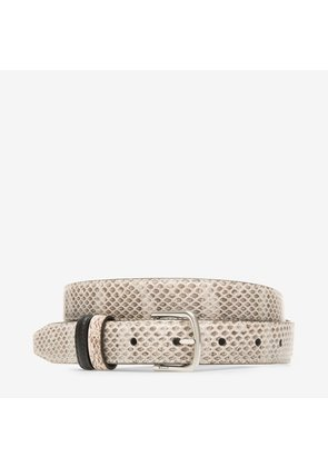 Bally Sofia 25Mm Brown, Women's watersnake skin fixed/reversible belt in natural