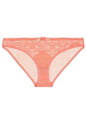 Stella McCartney - Ophelia Whistling Stretch-leavers Lace Briefs - Blush