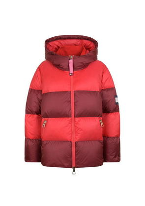 HILFIGER COLLECTION Rugby Down Jacket