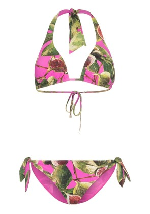 Dolce & Gabbana fig print triangle tie side bikini - Pink