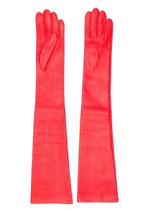 No21 long gloves - Red