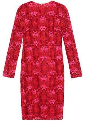 Dolce & Gabbana Woman Cotton-blend Guipure Lace Dress Red Size 36