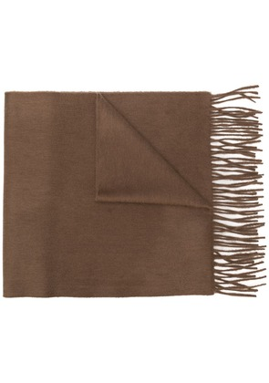 Begg & Co classic fringed cashmere scarf - Brown