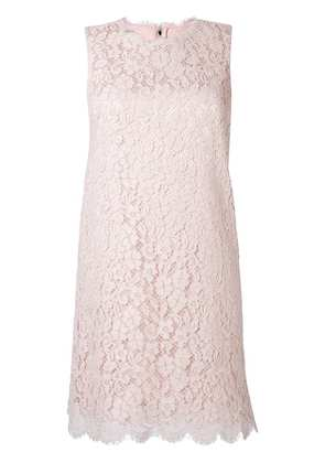 Dolce & Gabbana lace fitted dress - Pink