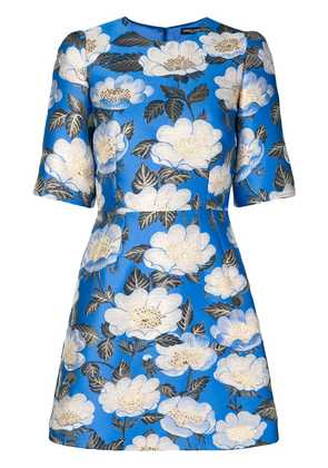 Dolce & Gabbana floral lurex jacquard dress - Blue