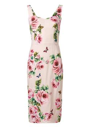 Dolce & Gabbana Printed Cady Dress - Pink