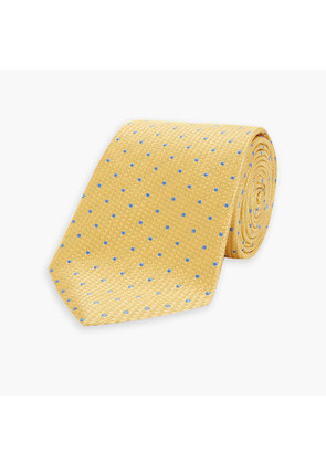 Light Gold and Blue Spot Lace Silk Tie