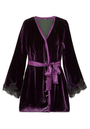 I.D. Sarrieri - Chantilly Lace-trimmed Velvet Robe - Purple